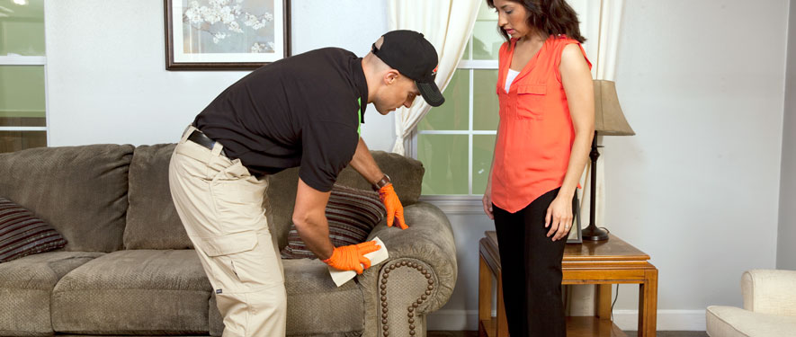 Bessemer, AL carpet upholstery cleaning